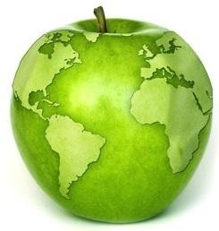 esportazione-frutta-verdura