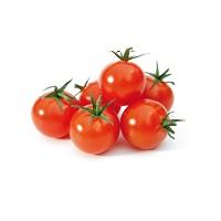 pomodori-ciliegino-pachino