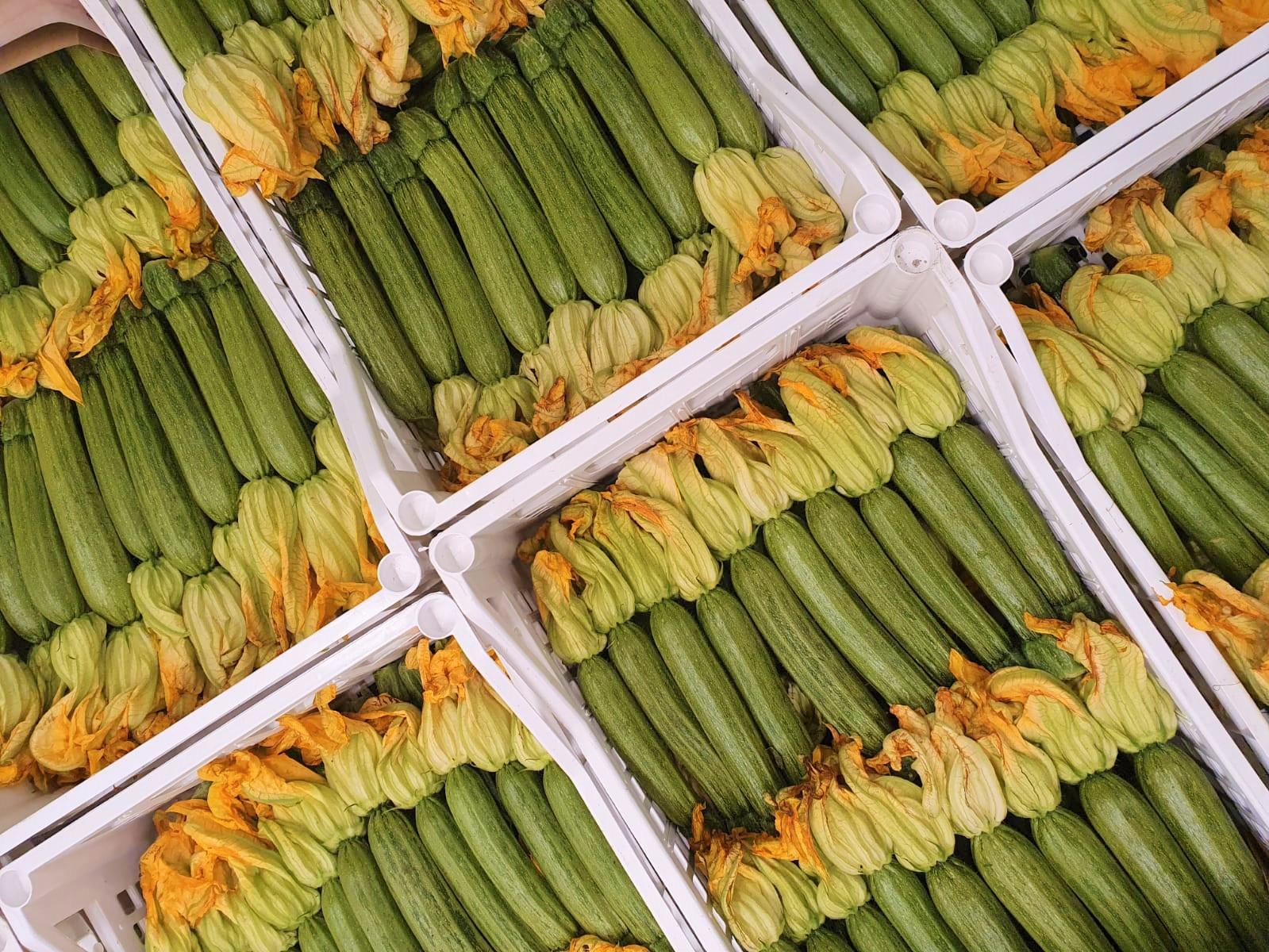 zucchine-fiew